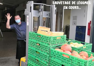 Notre cœur de métier ? Sauver les légumes du compost !